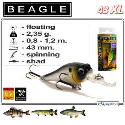 BEAGLE XL 43F