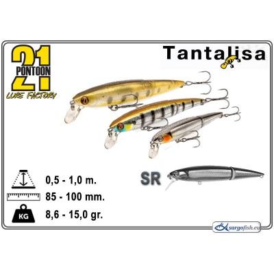 TANTALISA